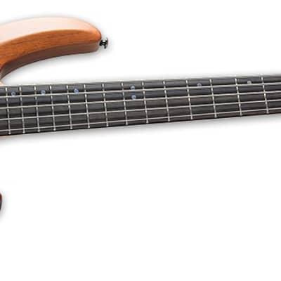 ESP/LTD B5-E Mahogany 5-String Electric Bass Guitar - Natural