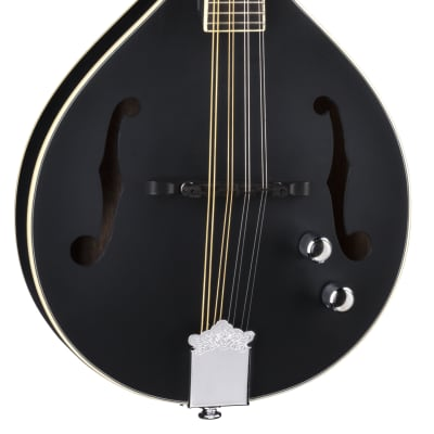 Luna Moonbird A Style Mandolin w/Piezo BGM MOON A for sale