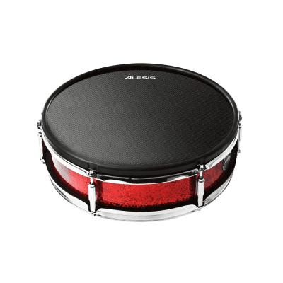 "Alesis Strike 14"" Dual-Zone Mesh Electronic Drum Pad"