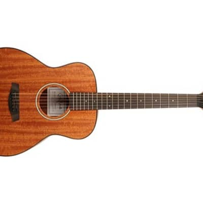 Carlo Robelli P304 Travel Acoustic Guitar for sale