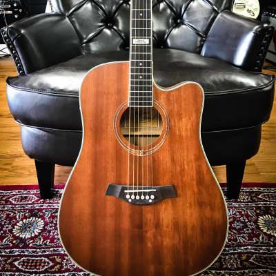 Tagima Kansas Mahogany Dreadnought Steel Acoustic for sale