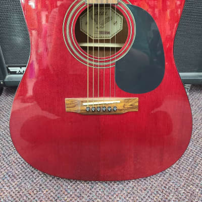 S101 ACOUSTIC for sale