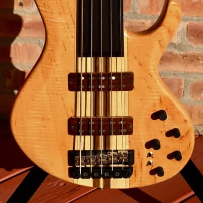 Fibenare  Globe SCNT5 FRETLESS for sale