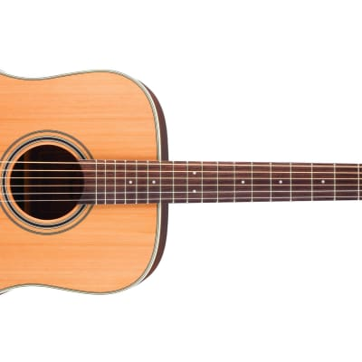 Takamine GD20-NS G20 Series Acoustic Guitar for sale