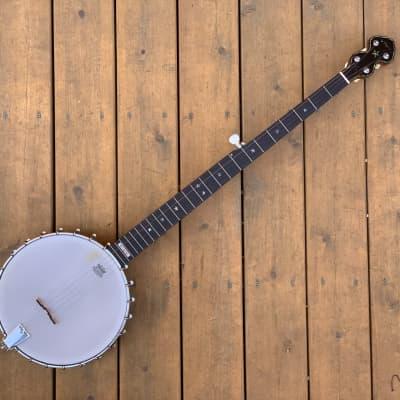 Pilgrim Morning Star Long-Neck Banjo for sale