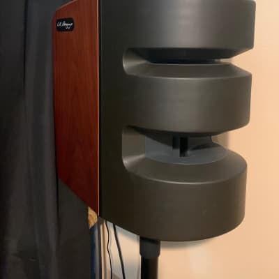 LR Baggs Synapse 500-Watt 2-Channel Personal PA System