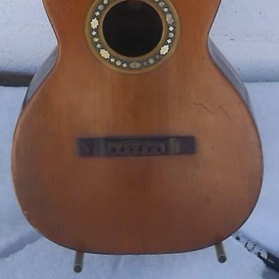 Bruno Parlor Guitar (Brazilian) 1915 for sale