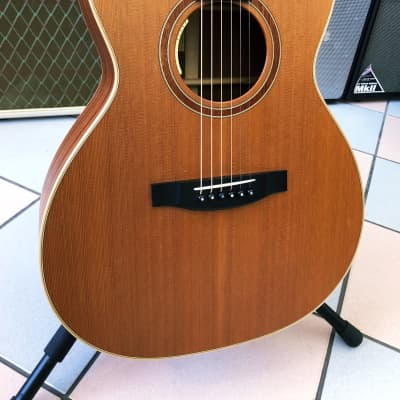 Lakewood M14 CP L.R. BAGGS ANTHEM for sale