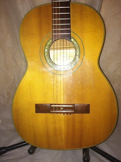 Suzuki Guitar Model