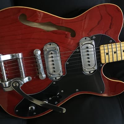 Fender Telecaster Thinline with TK Smith Pickups