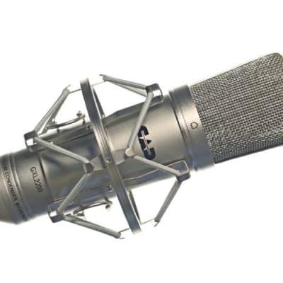 CAD GXL2200 Large Diaphram Cardioid Studio Microphone