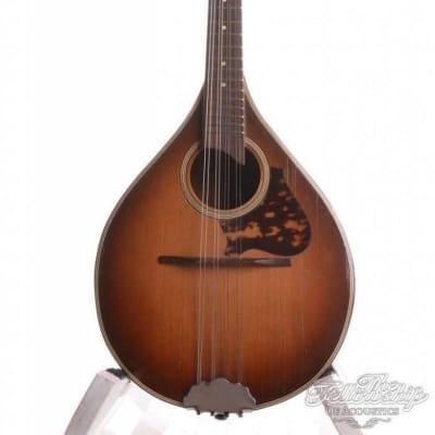 DiMauro Vintage Model 10 Muguet Mandolin 1940-60s for sale