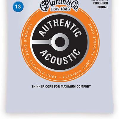 Martin MA550FX Authentic Acoustic FX Guitar Strings, Medium .013-.056