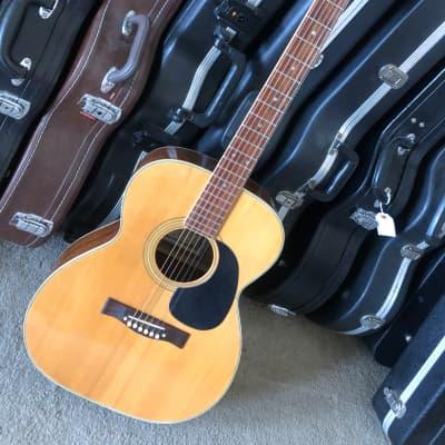 Fuji F200I Folk  Guitar Natural for sale