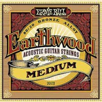 2002 EARTHWOOD MEDIUM 80/20 BRONZE ACOUSTIC GUITAR STRINGS - 13-56 GAUGE
