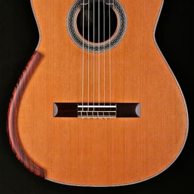 Cervantes Master Series Signature Model with East Indian Rosewood and Cedar 2020 for sale