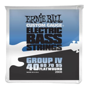 Ernie Ball 2808 Flatwound Group IV Electric Bass Strings (40-95)