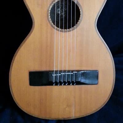 Meinel & Herold parlor guitar (1900) for sale