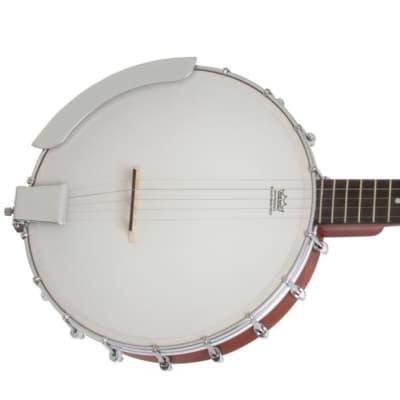 Epiphone MB-100 Open Back 5-String Banjo for sale