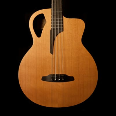 Furch Acoustic Bass B61 CM IV for sale