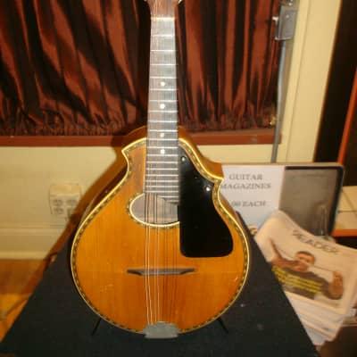Stromberg-Voisinet Mandolin 1920's for sale
